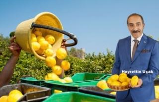 Limonun Önündeki İhracat Engeli Kalktı!