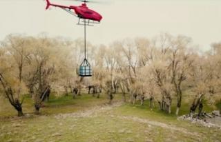 İnsansız helikopter Alpin, askeri görevler için...