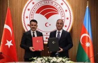Türkiye ile Azerbaycan arasında 4 anlaşma imzalandı