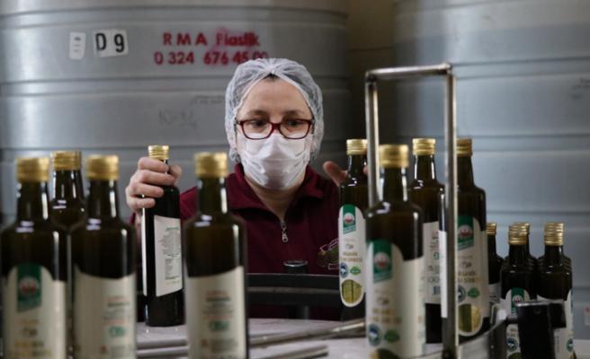 Koronavirüs doğal elma sirkesine talebi artırdı